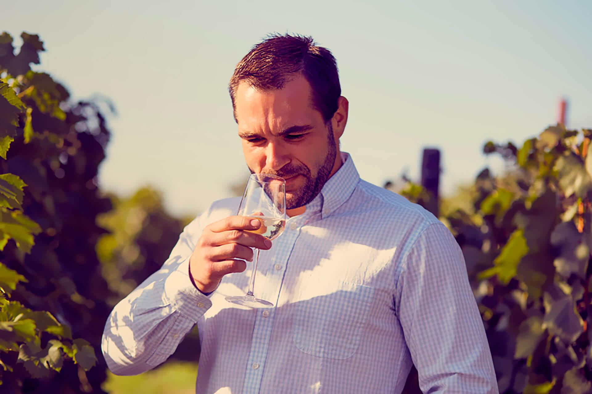 Slider gouteur vin
