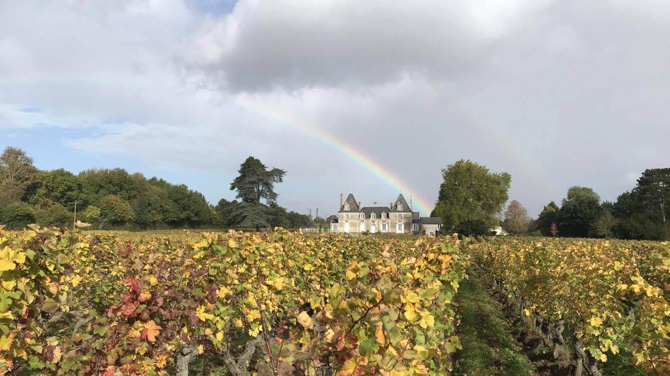 Bbv domaine chateauboisbrincon2